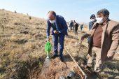 11 Kasım Milli Ağaçlandırma Günü'nde fidanlar toprakla buluştu