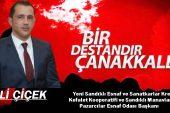 Başkan Çiçek'ten Çanakkale Zaferi ve Şehitleri anma günü mesajı