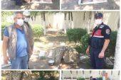 Yaralı Kızıl Geyik yavrusuna Jandarma şefkati